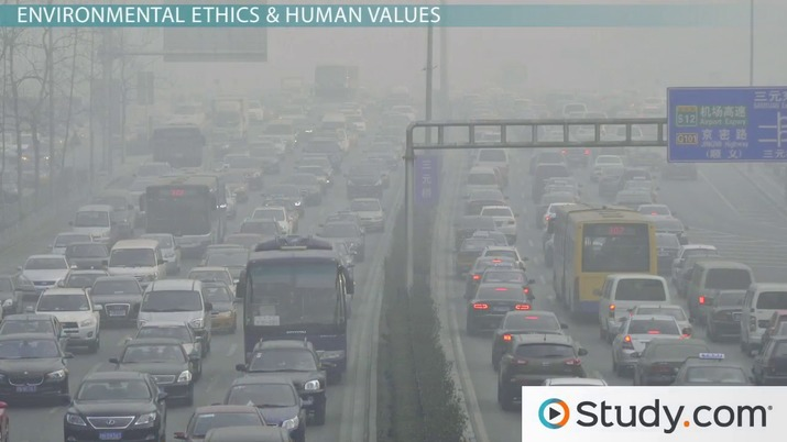 Environmental Ethics & Human Values: Definition & Impact on
