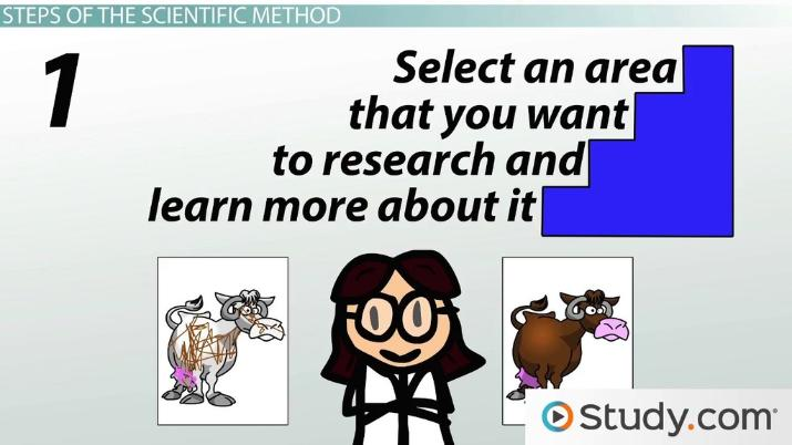 Scientific Method Applications To Human Growth And Development Research Video Lesson Transcript Study Com