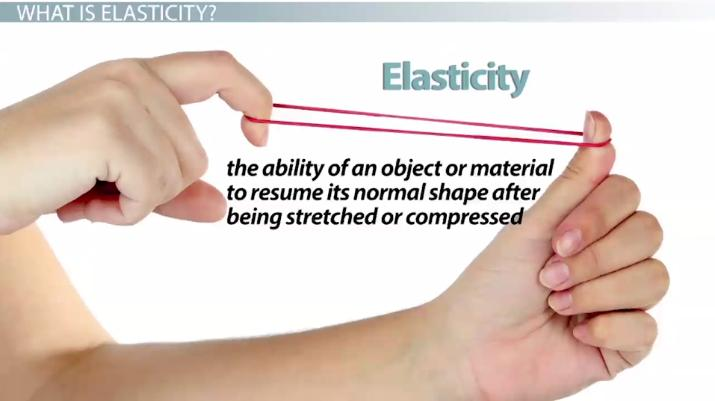Elasticity Of Solids Physics Lab Video Lesson Transcript Study Com