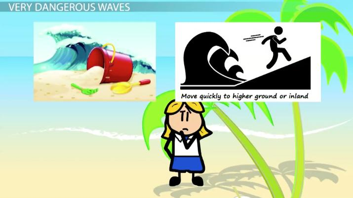 The Causes  Effects Of A Tsunami  Video  Lesson Transcript  What Are Tsunamis  Causes Effects  Facts Essays About English Language also Science And Literature Essay  A Level English Essay