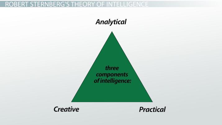 analytical intelligence definition explanation video lesson transcript studycom