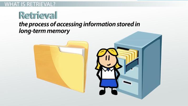 Retrieval Cues Definition Examples Video Lesson Transcript