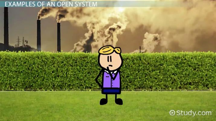 rational natural and open systems theory