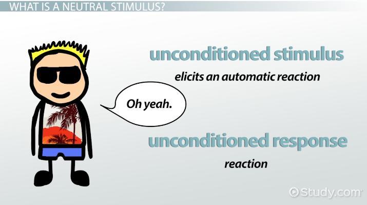 Perfect Neutral Stimulus: Definition U0026 Examples   Video U0026 Lesson Transcript |  Study.com