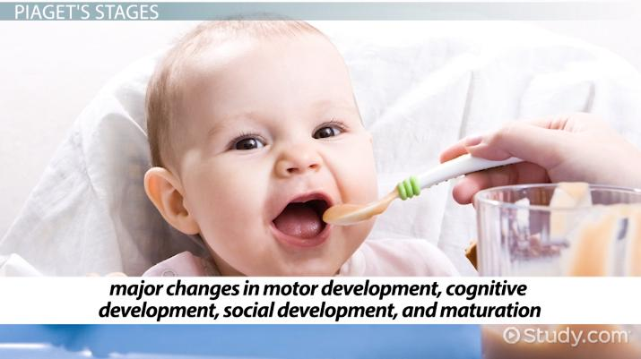 Developmental Perspective: Definition & Explanation - Video