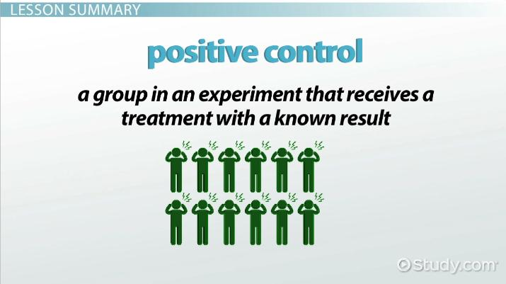 positive control  definition  u0026 experiment