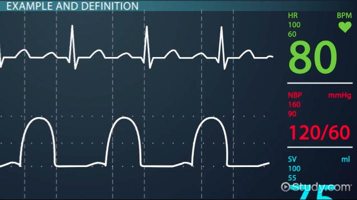 What Are Vital Signs? - Definition & How to Take Them - Video
