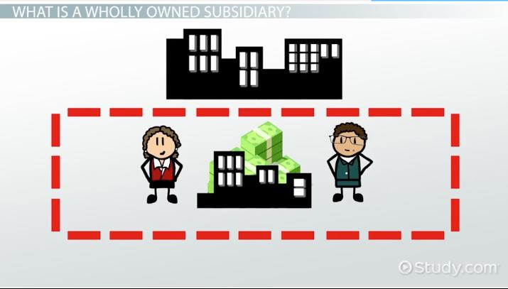 Wholly Owned Subsidiary: Definition, Advantages