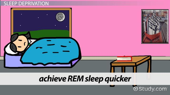 rights in rem definition