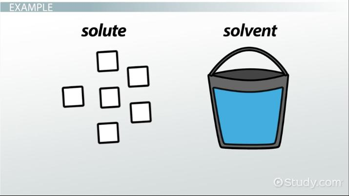 Solute Concentration Definition Overview Video Lesson