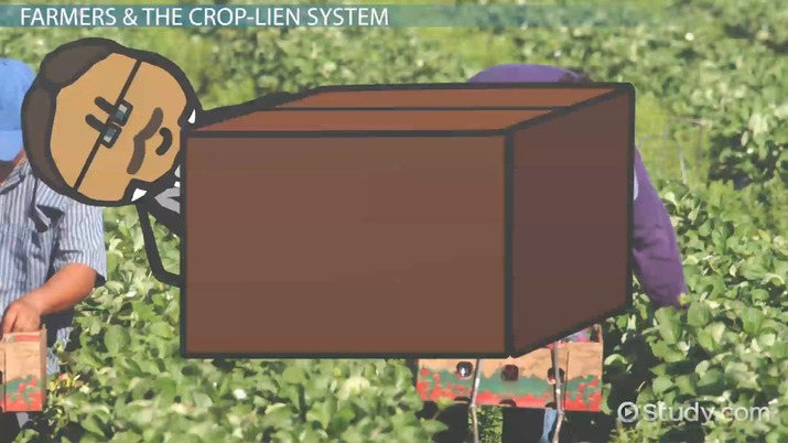 Crop Lien: System & Definition - Video & Lesson Transcript