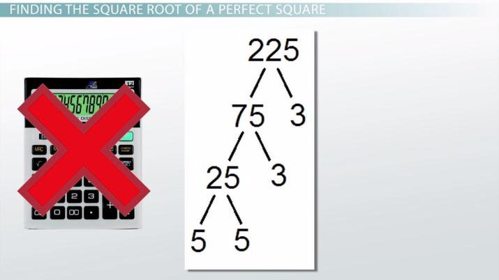 Square Root Of 225 Is 25 True Or False : Use this table to find the squares and square roots of numbers from 1 to 100.you can also use this table to estimate the square roots of larger for instance, if you want to find the square root of 2000, look in the middle column until you find the number that is closest to 2000.