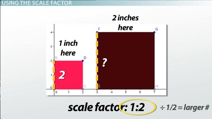 What is a Scale Factor? - Definition, Formula & Examples