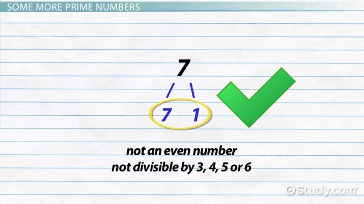 What Are Prime Numbers Definition Exles Video Lesson. What Are Prime Numbers Definition Exles Video Lesson Transcript Study. Worksheet. Worksheet Works Prime Numbers At Clickcart.co