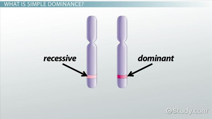 Simple Dominance: Definition & Concept