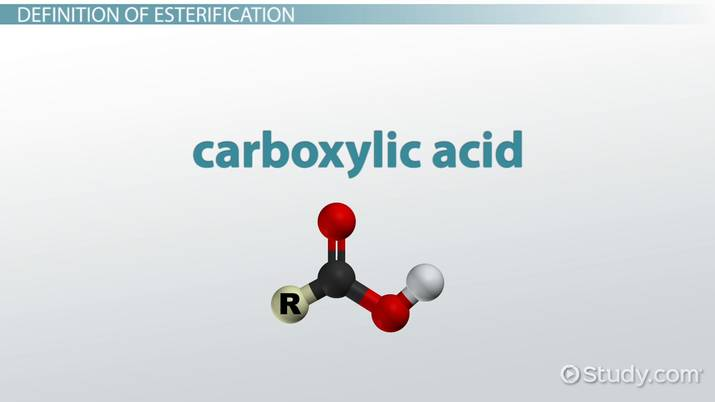 How do you say carbolic acid in spanish