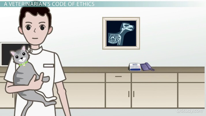 The Veterinarian's & Veterinary Technician's Codes of Ethics