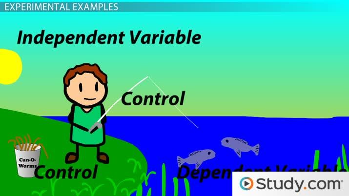 Identifying & interpreting independent & dependent variables.