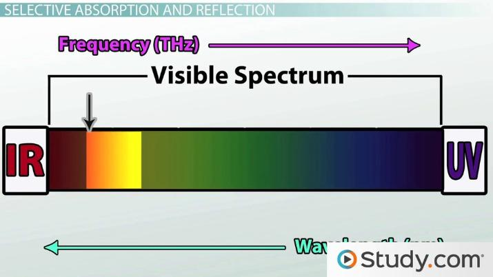 Color White Light Reflection Absorption Video Lesson