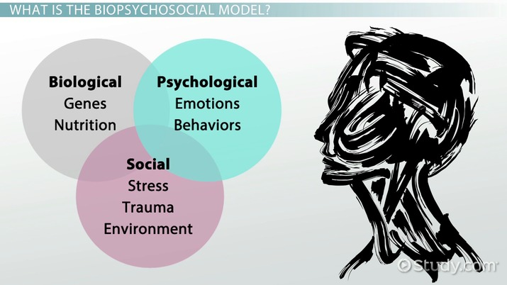 What Is The Biopsychosocial Model Definition Example Video
