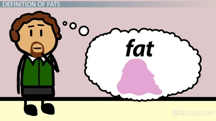 What Are Fats? - Functions & Molecular Structure