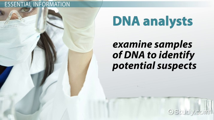 Dna Analyst Job Description Duties And Requirements