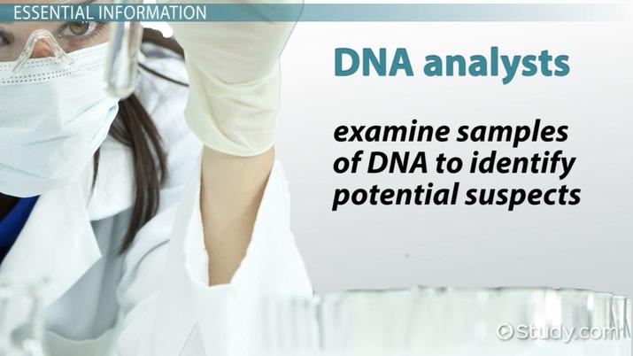 Dna Analyst Job Description Duties And Requirements