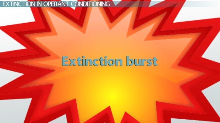 What is Extinction in Conditioning? - Definition & Explanation