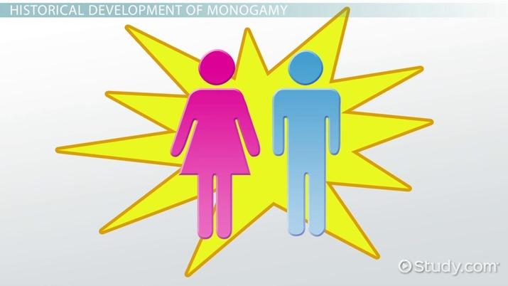 Definition of monogomy