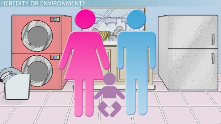 heredity and environment definition