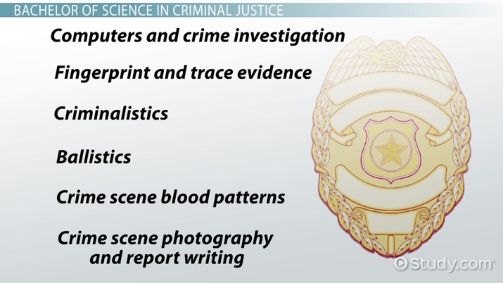 Crime Scene Investigation Training Programs and Courses
