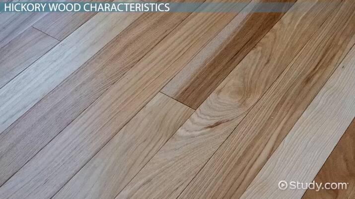 Hickory Wood Characteristics Uses