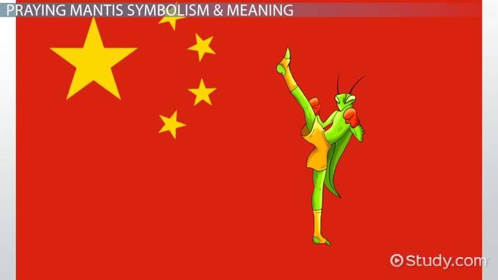 Praying Mantis: Symbolism & Meaning - Video & Lesson Transcript