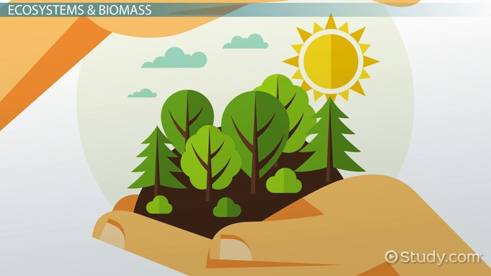 What countries in the Caribbean uses biomass as an energy
