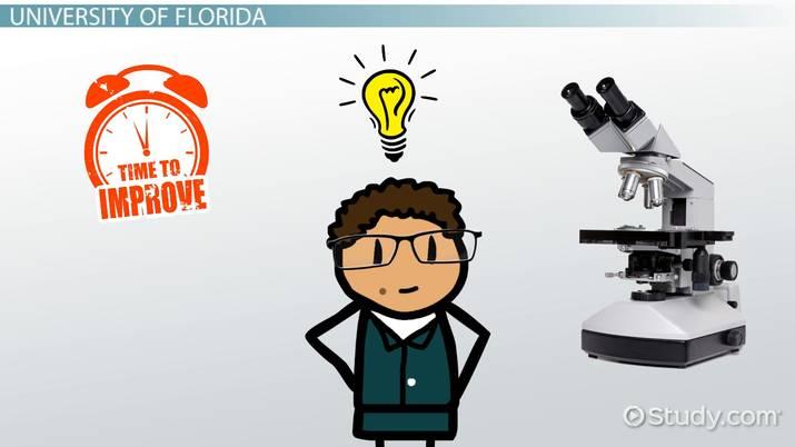 Best Schools with Online PhD Programs: List of Top Schools