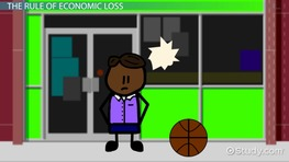 Economic Loss: Definition & Rule