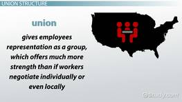 Local Unions: Types, Structure & Leadership