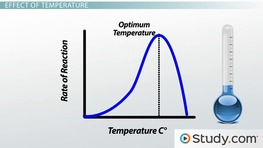 Enzyme Activity & Inhibition: Structure, Substrates, pH & Temperature