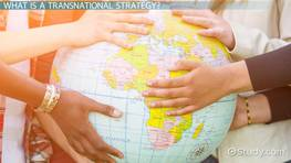 Transnational Strategy: Definition & Examples
