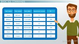 Basic SQL Commands in Database Management Systems (DBMS)