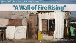 A Wall of Fire Rising by Edwidge Danticat: Summary, Symbolism & Analysis