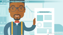 How Do Businesses Use Demographic Data?