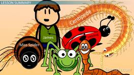 James & the Giant Peach: Theme & Characters