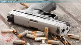 REDUCING FIREARMS VIOLENCE THROUGH DIRECTED POLICE …