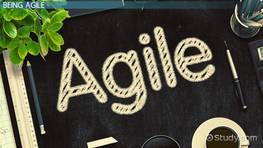 What is an Agile Environment? - Definition & Example