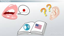 Language Acquisition: Definition, Theories & Stages