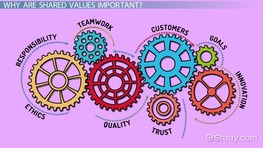 Shared Values in an Organization: Definition & Explanation