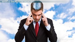 What Is Short-Term Memory: Definition & Causes for Memory Loss