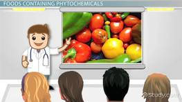 What Are Phytochemicals? - Definition, Foods, Benefits & Examples