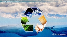 Evaporation Lesson for Kids: Definition & Facts